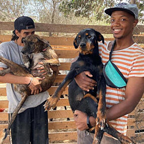 Marleys Mutts rescue team saves Morocco pets
